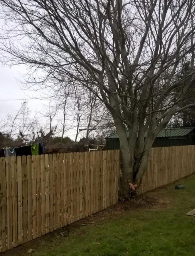 Gallery ark fencing kildare dublin